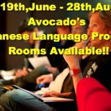 ◆◆ 2016 ◆◆  Kyoto Avocado Vill