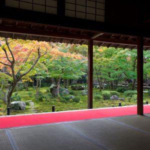 kyotoimage_00001