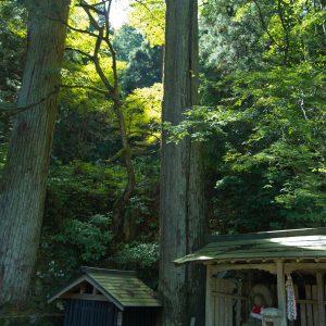 kyotoimage_00021