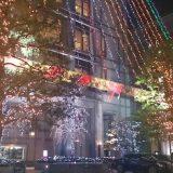 京都ホテルオークラのクリスマスイルミネーションです☆
