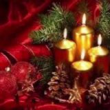 Have a wonderful Christmas wit